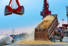 Truck dumping a load of grain at a port