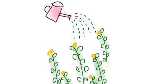 Drawing of a watering can sprinkling flowering plants
