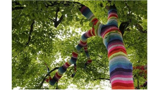 View looking up into a tree which as brightly striped crocheting covering its trunk and limbs
