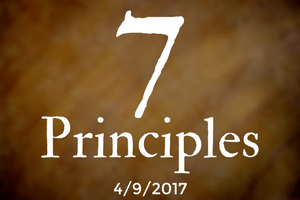 The 7 Principles, Part Seven: Web of Existence