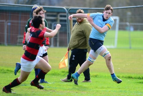 UCD v Trinity - Maughan Scally Cup 2019
