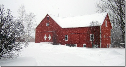 snowy-barn
