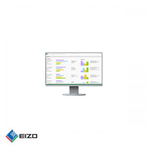 "Eizo FlexScan 24"" full HD professional IPS monitor Wit"