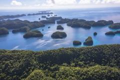 Palau-2017-Palau-Siren-13