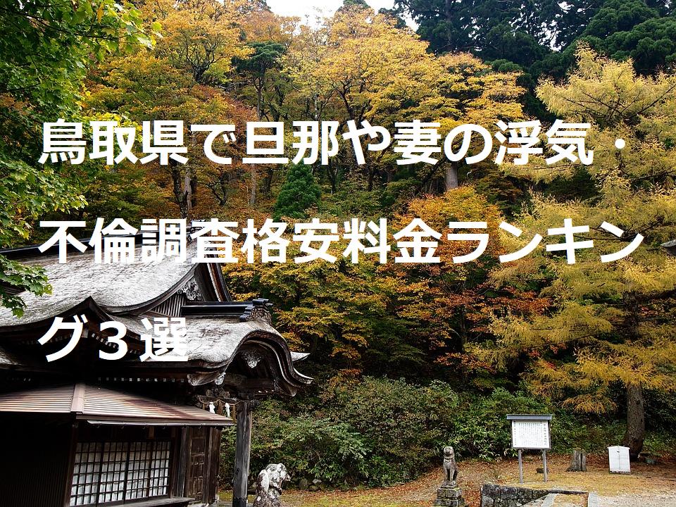 鳥取県で旦那や妻の浮気・不倫調査格安料金ランキング3選