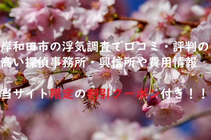 岸和田市の浮気調査で口コミ・評判の高い探偵事務所・興信所や費用情報