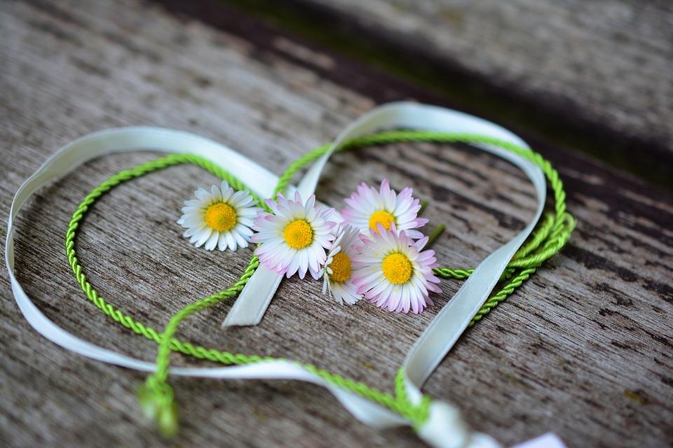 デイジー 心 ロマンス バレンタインデー 愛 スプリング ご挨拶 ハート形 友情 シンボル