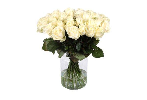 100 witte rozen | Gratis vaas | Uwbloemenman.nl