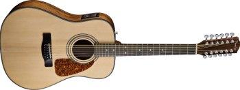 12-snarige western gitaar