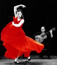 flamenco gitarist