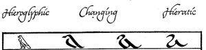 Hieroglyphs to hieratic