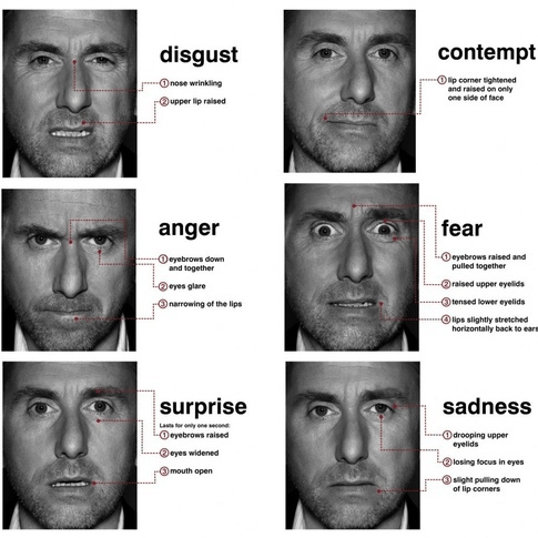 tim roth face's expressions