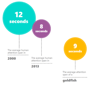 goldfish-effect - étude de Microsoft Canada - Marie Serindou