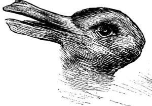 illusion lapin canard loi prégnance