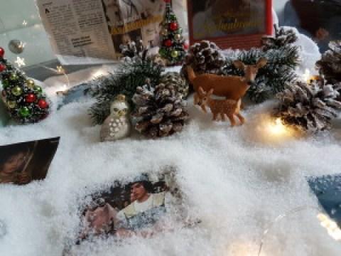 Vitrine_Weihnachten_2016