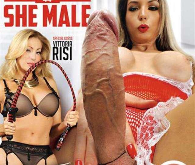 Big Tits Adult Video