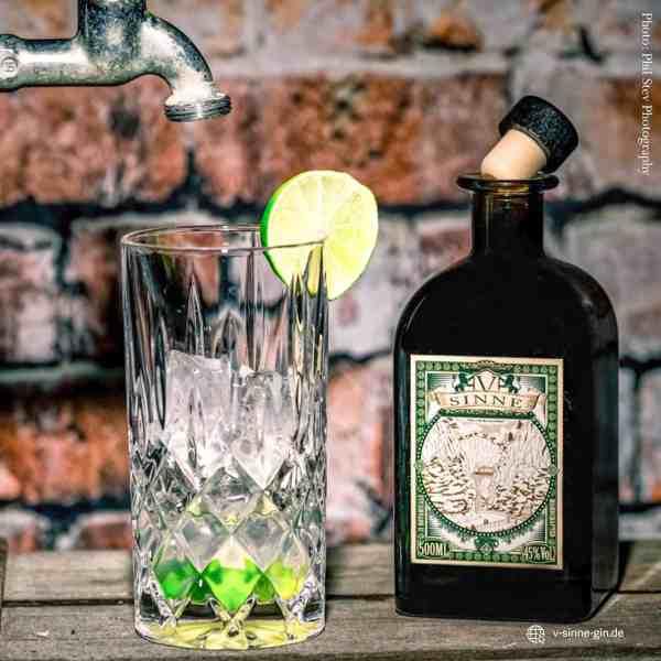 V-SINNE Dry Gin Tonic