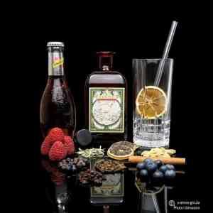 V-SINNE Raspberry Gin Ginvasion Bericht