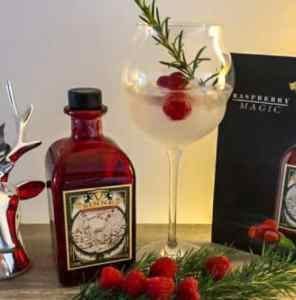 V-SINNE Raspberry Magic Gin Cocktail grillkameraden.de