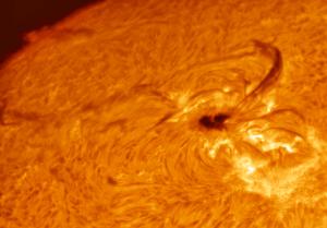 sunspot alpha