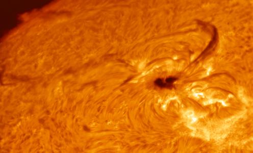 Experts Predict a Long, Deep Solar Minimum