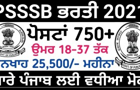 punjab sssb recruitment school librarian legal clerk