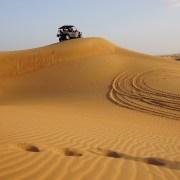 safari deserto