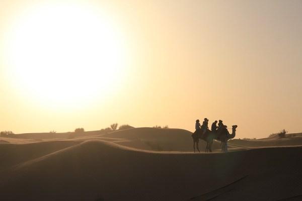safari deserto 5
