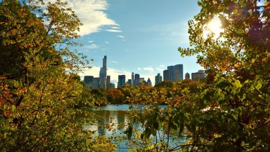 autunno a new york