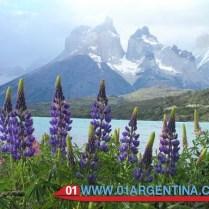National Park Tierra del Fuego