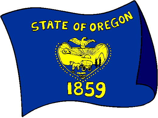 Flag American Carolina North Outline
