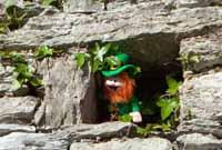 Seamus Irish Leprachaun