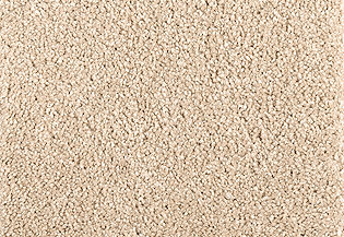 applying the most novel fiber innovation that you will ever think of this carpet offers an outstanding standard of elegance performance and comfort