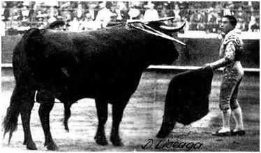¿Dónde se lidió el toro más grande de la Historia?