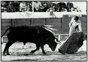 Corrida de Ferias de 1978. Ortega Cano ante un toro de Sílvia Camacho.