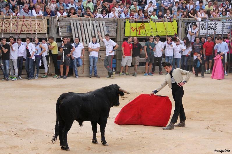 Curro Linares