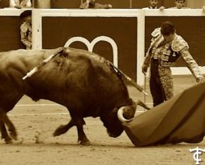 Foto: Torocultura.com