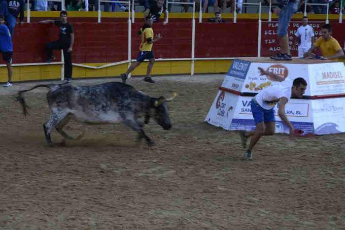 Toros a Ulldecona (Tarragona) i a Vidreres (Girona)