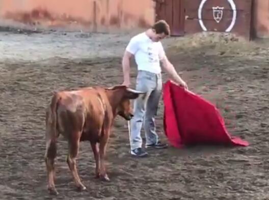 Los toreros de Anna Gabriel