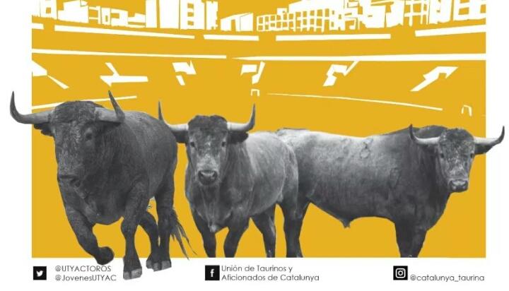 La UTYAC, rumb a Castellón per veure els Victorino