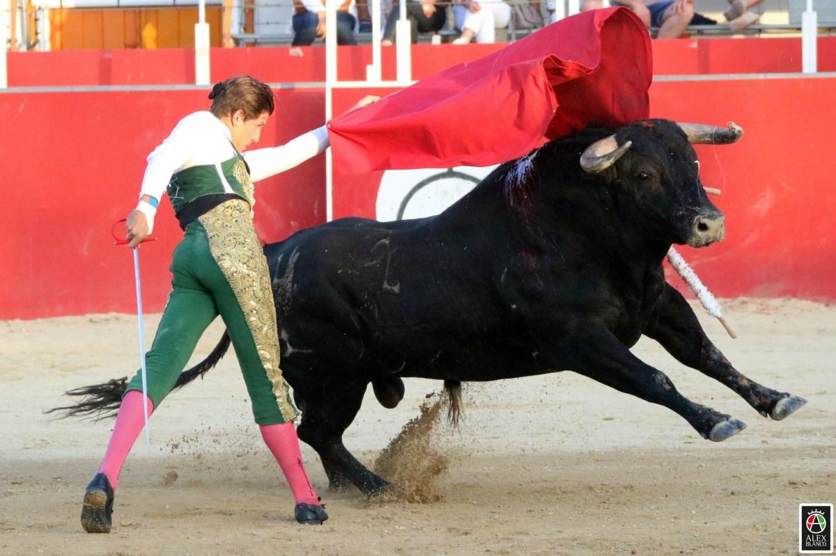 Maxime Solera anunciat a l'Alfarero de Oro de Villaseca de la Sagra