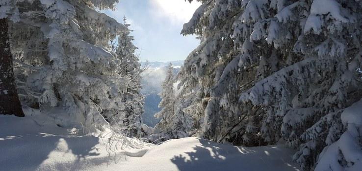 Fachau, tips over skiën, apres skiën en eten in de Ski Amadé