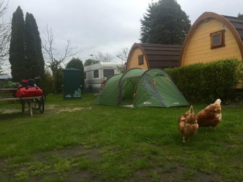 Camping de Grienduil - Lingeroute - kamperen - pizza oven