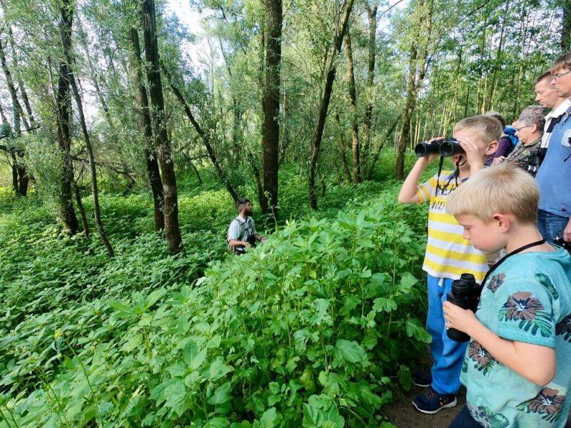 Bever excursie - Staatsbosbeheer - Grote vijf - Vaders op Reis - Millingerwaard