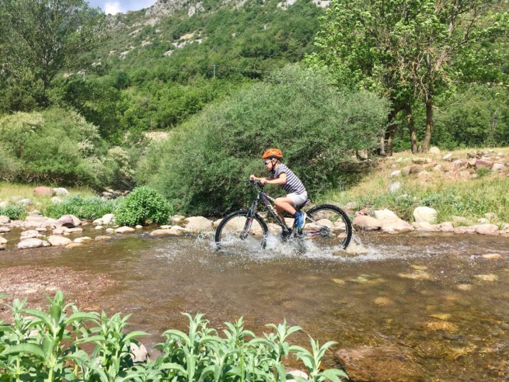 SNP - Family special - Mountainbike
