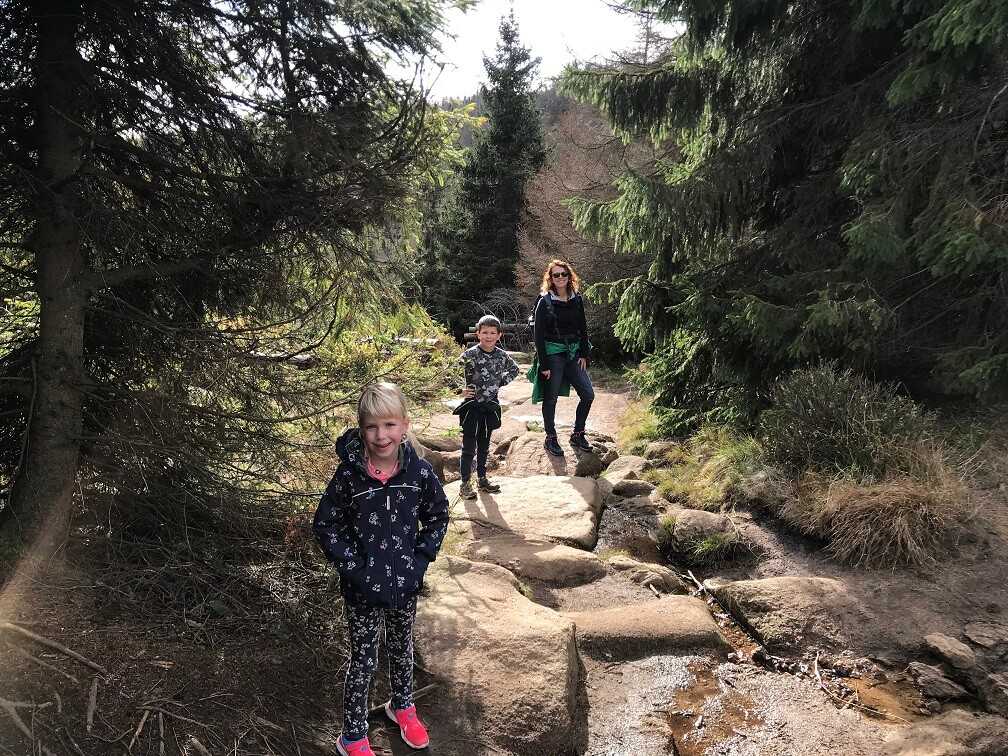 Wandelen in de Harz met het gezin