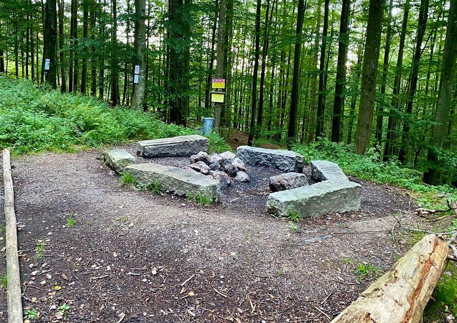 Camp Grimbach in het Zwarte Woud