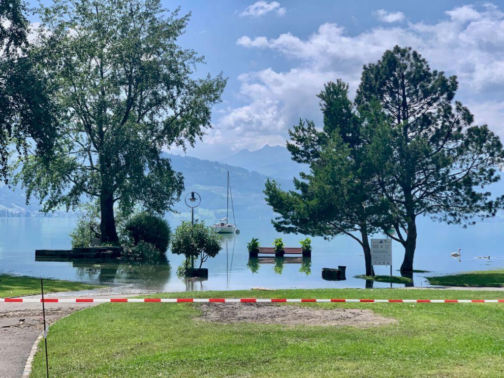 Interlaken - Tip - Manor Farm - Thuner See