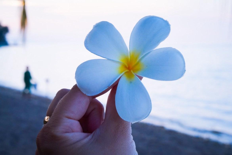 Viides kerta Balilla toden sanoo