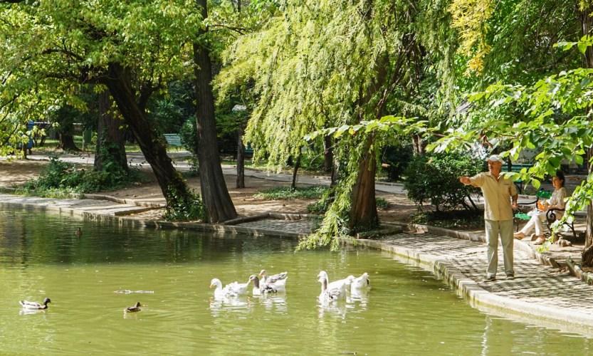 Bukarest on kiva kaupunki, mutta… - Gallery Slide #6